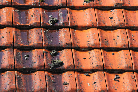 roof tile: Roof cleaning with high pressure