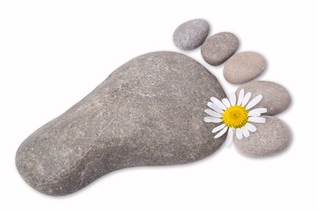 Foot with chamomile