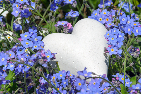 Flower bed with forget me not and white heart
