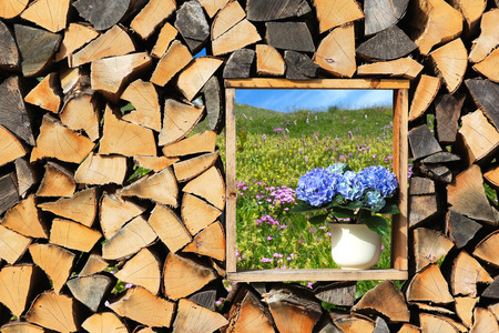 countrified: Wooden wall with window, firewood