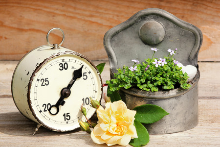 elapsed: Old alarm clock, time to plant