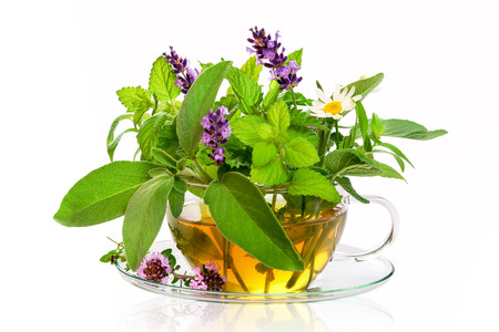 Teacup with fresh healing herbs
