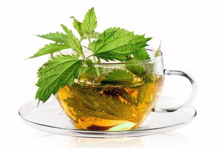 stinging  nettle: Fresh stinging nettle tea