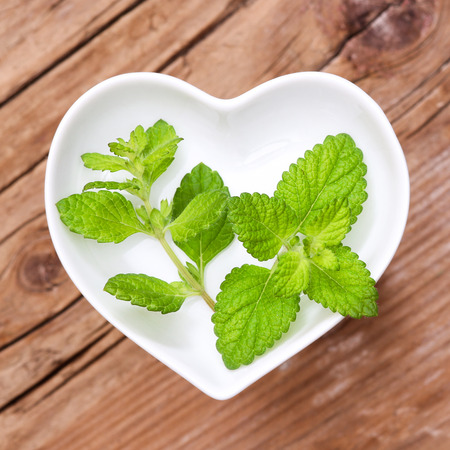 bee balm: Homeopathy and cooking with lemon balm