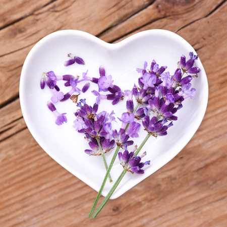 Homeopathy and cooking with lavender Stock Photo