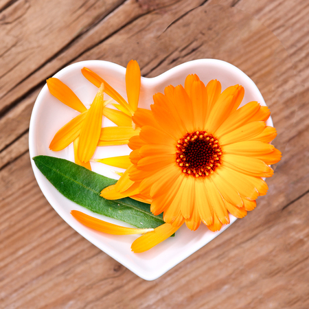 medicina natural: La homeopatía y cocinar con la caléndula