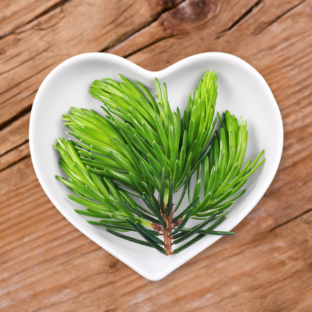 flavouring: Homeopathy and cooking with spruce