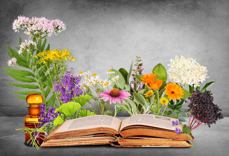 Medical plants with old books and glass bottle