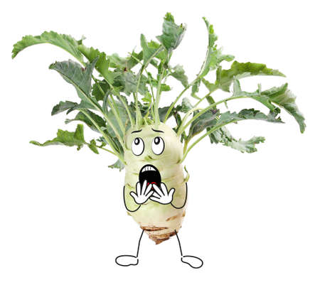 Kohlrabi with too much hair comic