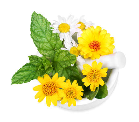 Arnica, chamomile and marigold in a mortar