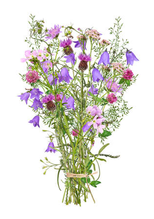 Bouquet with various wild flowers, isolated 免版税图像