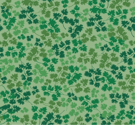 cottage garden: floral seamless background with the leaves of parsley  Illustration