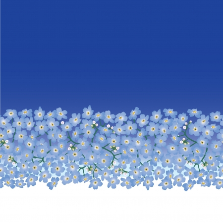 floral seamless border with forget-me-not flowers Vector