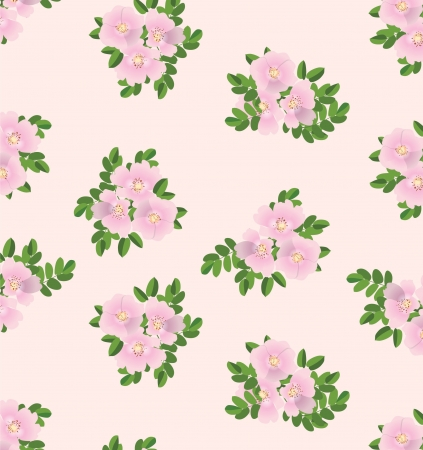 rose bush: Dog roses seamless flowers pattern on beige background  Illustration