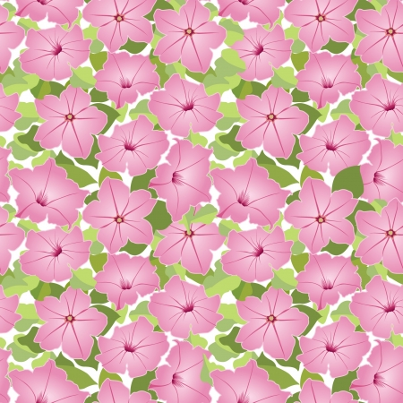 petunia: seamless floral texture with pink flowers petunia Illustration