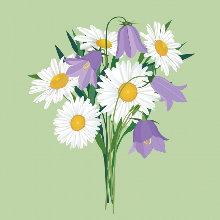 flower bouquet with bluebell and chamomile  Stock Vector - 16139987