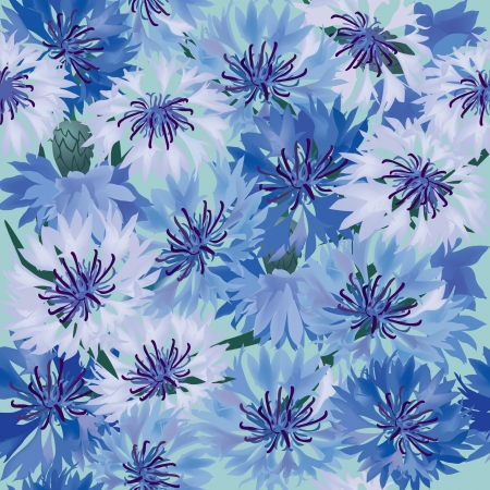 floral background  seamless pattern with blue cornflower Vector