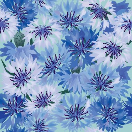 garden cornflowers: floral background  seamless pattern with blue cornflower Illustration