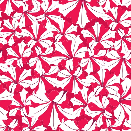 floral seamless background  red and white flower pattern Vector