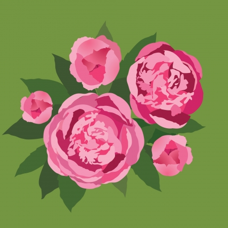 peonies: flower bouquet with pink flowers peonies Illustration