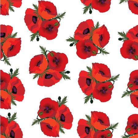 flower poppy seamless pattern, floral background  Vector