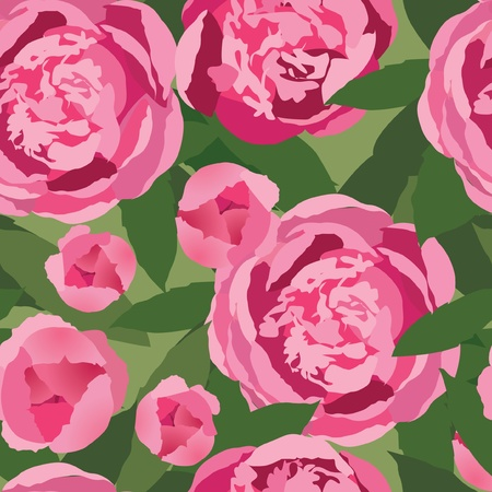 floral seamless pattern  pink flower peony background Vector