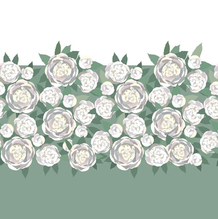 peonies: floral seamless border  white flower peony background Illustration