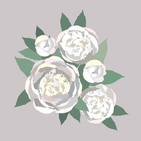 flower bouquet  White flowers peony  Vector