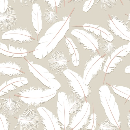 delicate: seamless background with white feathers  Illustration