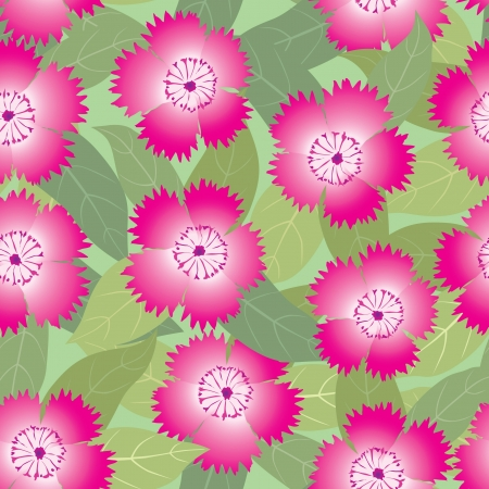 floral seamless pattern  pink flowers carnations background Vector