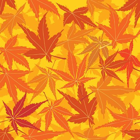 seamless pattern with autumn maple leaves Stock Vector - 16228700