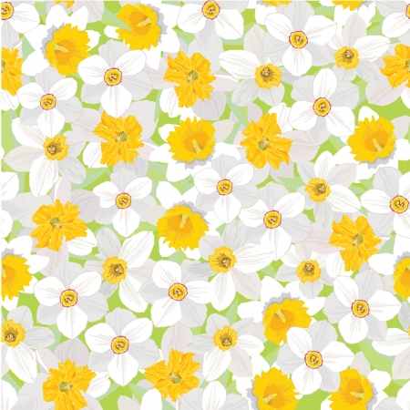 rose bud: floral seamless background  pattern with flowers daffodils