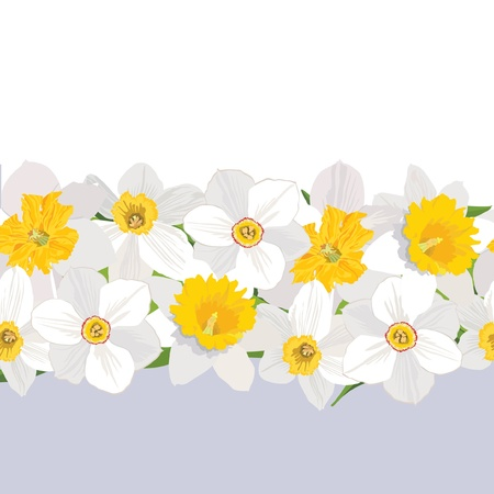 marriage bed: floral seamless background  Border with flowers daffodils