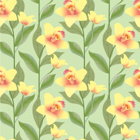 floral seamless pattern  background with white flower orchids Vector