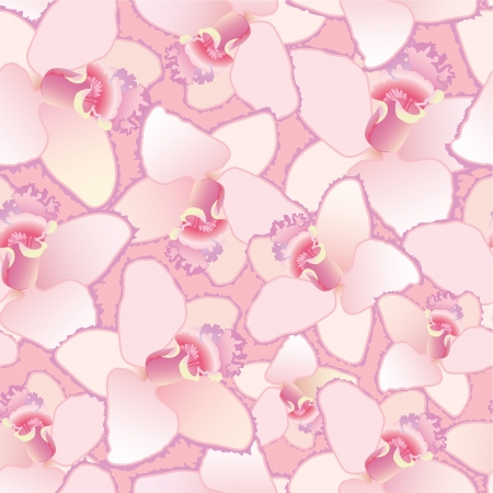 an inflorescence: floral seamless pattern  background with white flower orchids