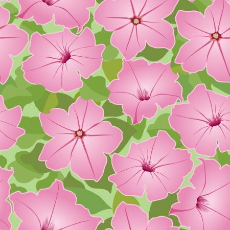 vintage theme: floral background  seamless pattern with pink flowers petunia  Illustration