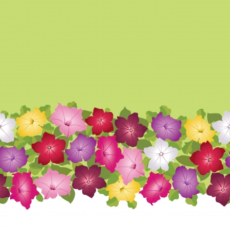 petunia: floral border  seamless background with flowers petunia  Illustration