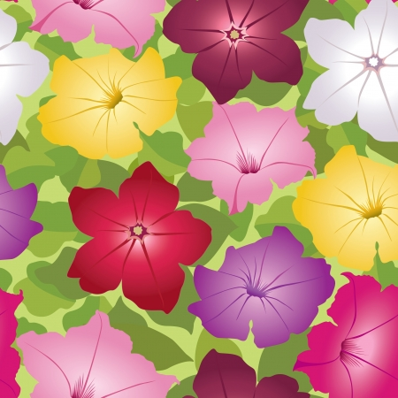 floral background  seamless pattern with flowers petunia  Vector