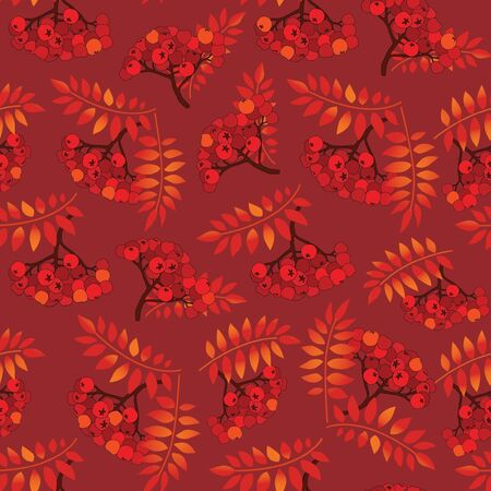 Rowan berry seamless texture  Autumn background Vector