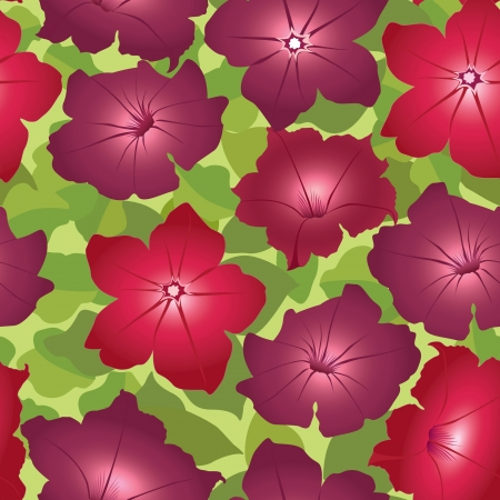 petunia: floral seamless background with red flower petunia