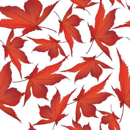 Autumn maple leaves seamless pattern background  Illustration