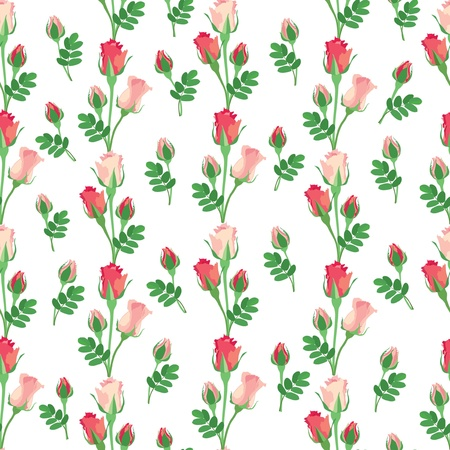 flower seamless background with pink and red roses on white