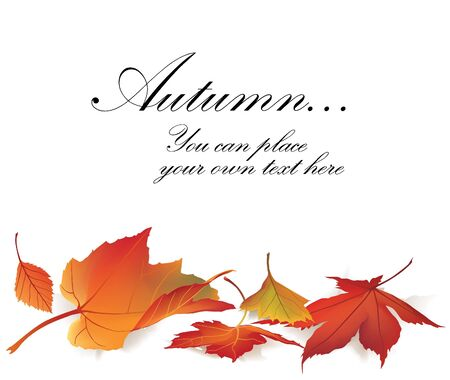 autumn maple leaf vector frame for copy space on white background Stock Vector - 16423978