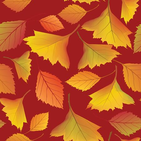 autumn leaves seamless pattern background Stock Vector - 16422896
