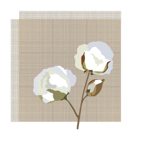 organic cotton: Cotone icona tessuto con fiore in cotone