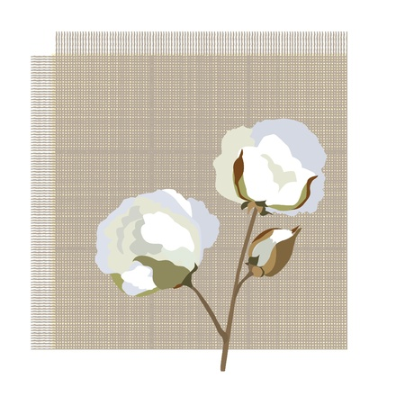 cotton plant: Cotton fabric icon with cotton flower
