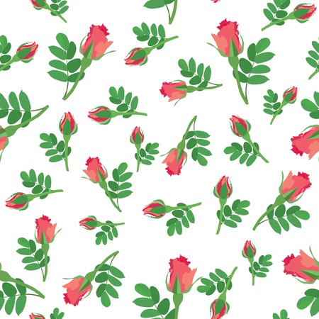 flower seamless background with pink and red roses on white  Vector