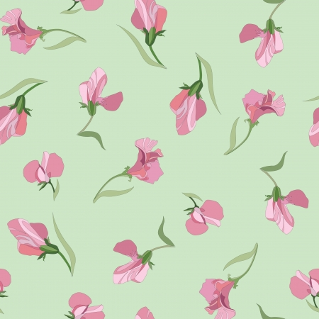 seamless pattern with lilac and pink flowers sweet peas on green background  Vector