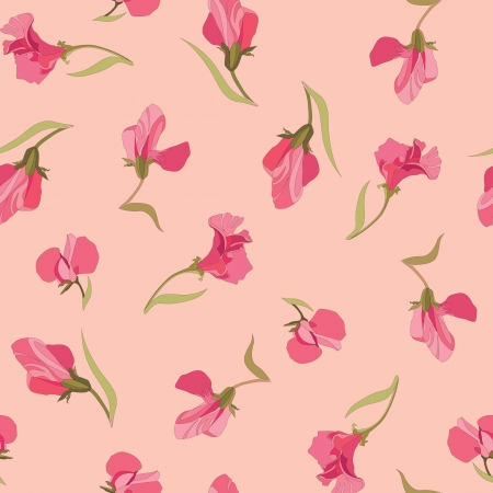 floral seamless pattern, lilac and pink flowers sweet peas  Vector
