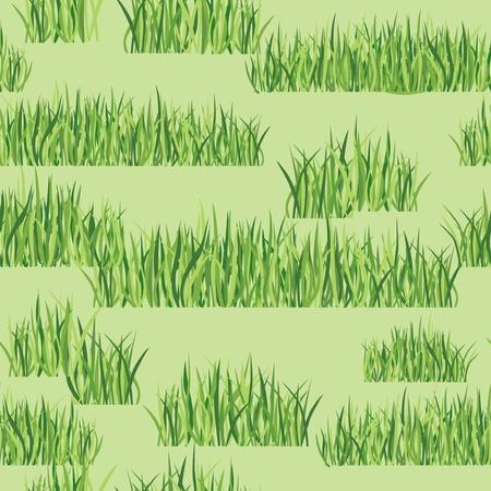 grassy plot: hierba de fondo sin fisuras patr�n floral Vectores